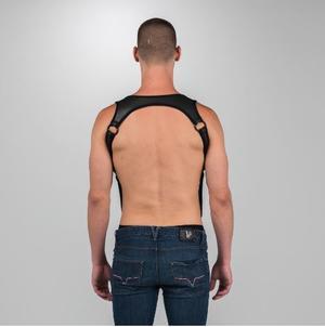 Neoprene Heckler Harness (different colors)